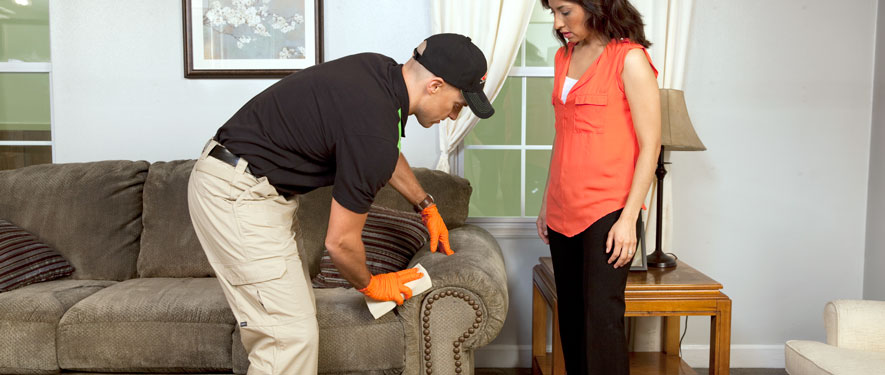 Burlington, IA carpet upholstery cleaning